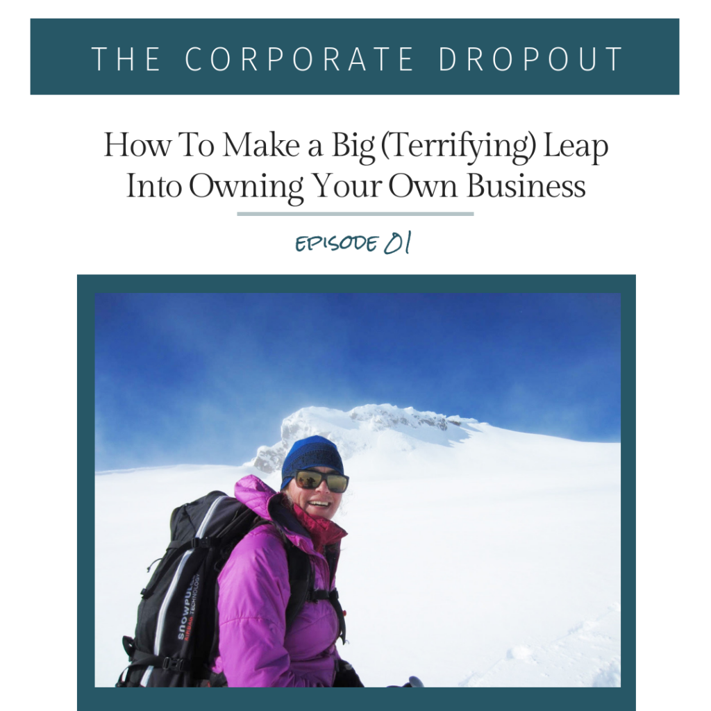 the corporate dropout podcast lisa gerber